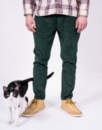 pantalon-pisica-min
